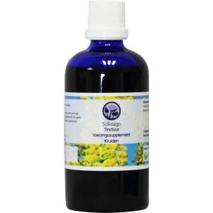 B. Nagel Solidago Tinctuur 100ml
