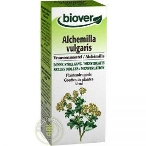 Biover Alchemilla Vulgaris