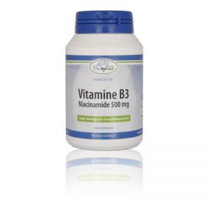 Vitakruid B3 Niacinamide 500mg Capsules