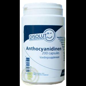 disolut anthocyanidinen capsules