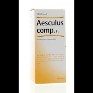 heel aesculus compositum h 100ml