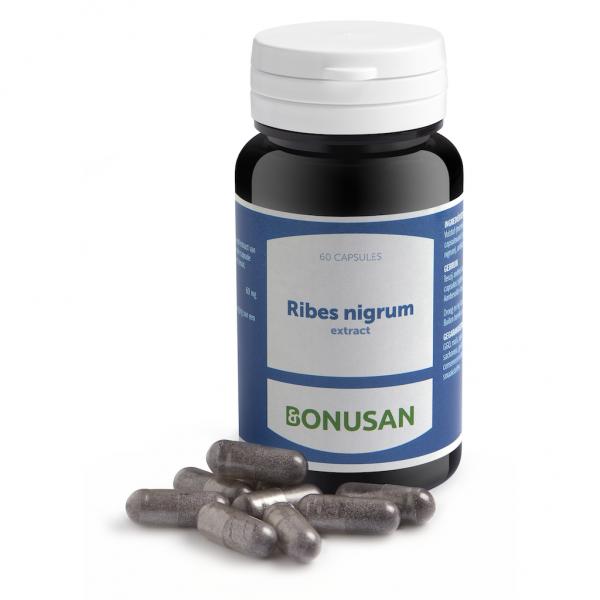 Bonusan Ribes Nigrum Extract Capsules 60st